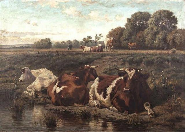 Cows lying on a river bank, three in foreground, several further back on elevated hillside, water in foreground